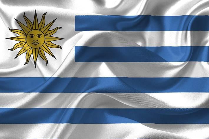 Svetsko prventvo u Urugvaju, zastava