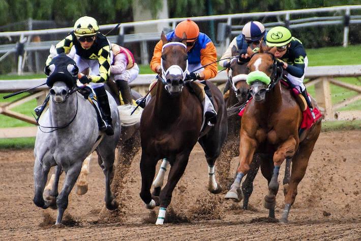 trke konja sa njihovim jahačima